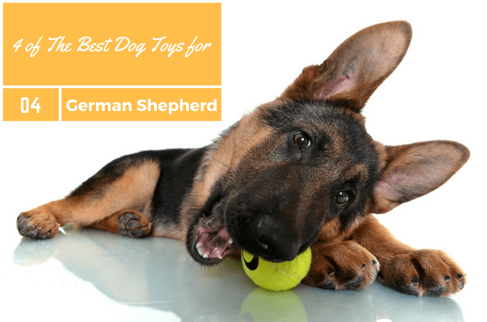 Best Dog Toys for German Shepherd